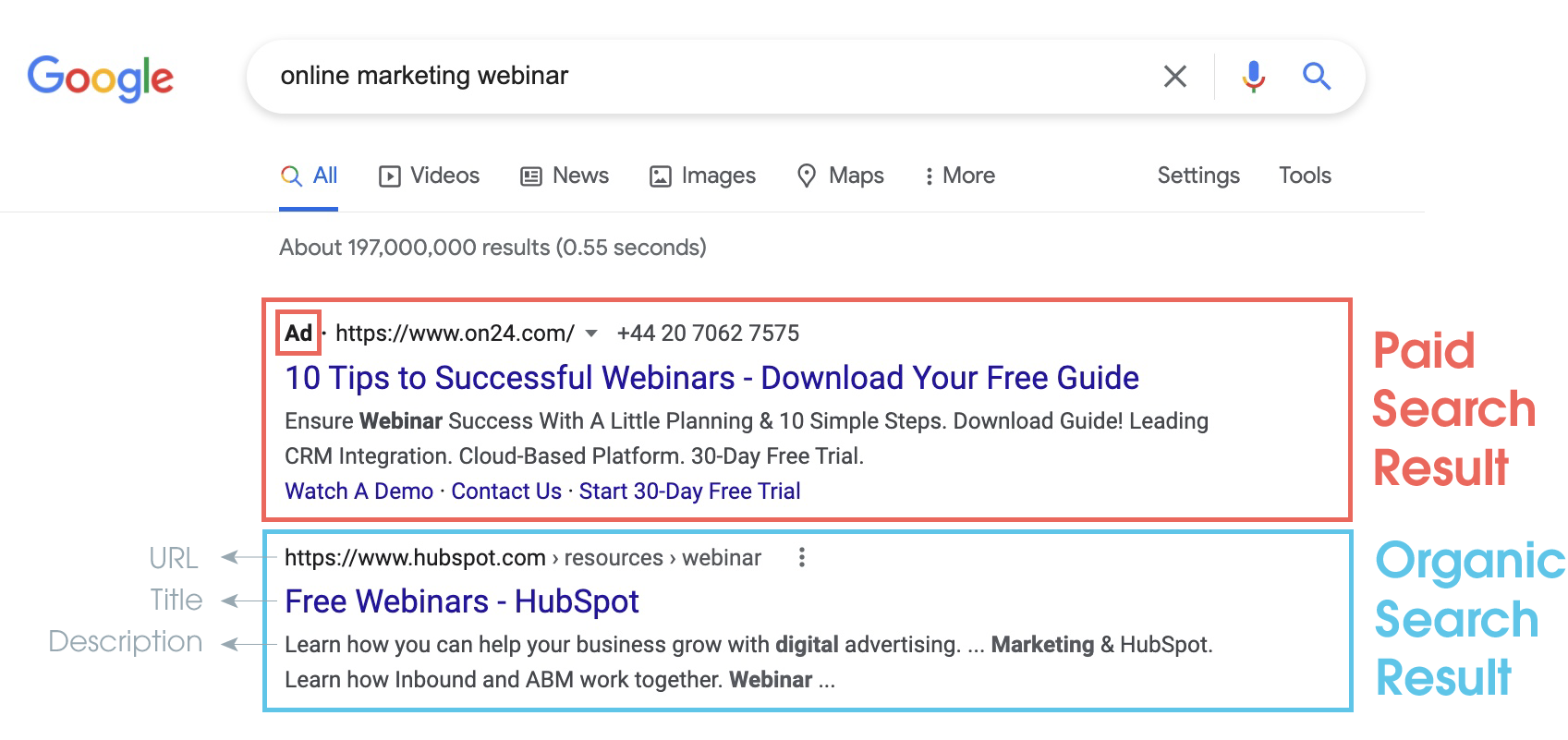 Display of paid and organic results in the SERPs