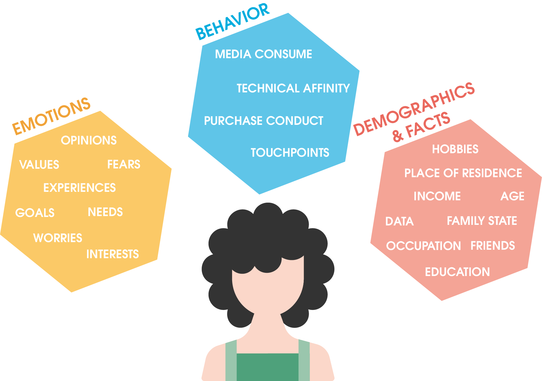 What influences a persona: emotions, behavior, demographics and facts